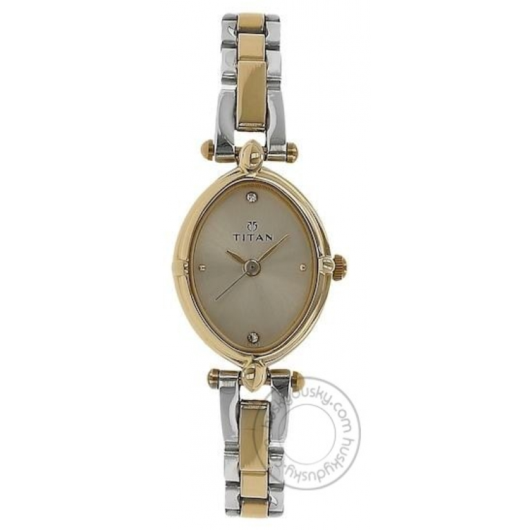 Titan analog Champagne Dial Watch for Girl or Woman 2419BM02 Two Toned Stainless Steel Strap Gift Women's Watch